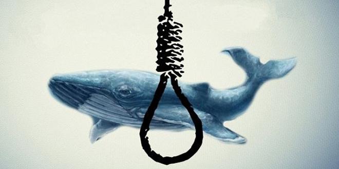 مدیرعامل بنیاد ملی بازیهای رایانهای : چالش نهنگ آبی تمام شد